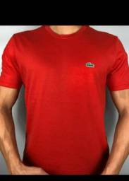 Camiseta (2 camiseta por 100)