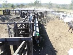 Fazenda com 720ha pra gado, em Presidente Olegario!!