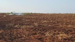 Fazenda a venda em Palestina de Goiás aptidão pra soja
