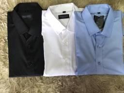 Camisas M. Curta