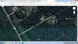 Título do anúncio: Vendo área de terra com 5.000 m²