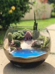 Título do anúncio: Terrário de suculentas em vaso de vidro .