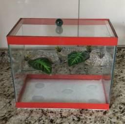 Aquaterrario tartaruga