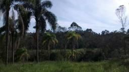 Lindo Sitio com fundos para represa em Biritiba Mirim !!!