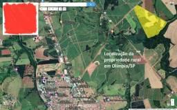 Sitio- 33 alqueires Paulista - Olímpia SP