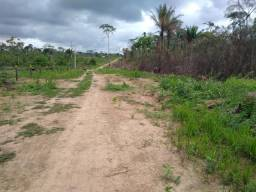 5 hectares