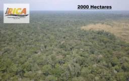 Fazenda com 2000 Hectares à venda em Canutama/AM Cód.FA0135