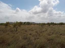Fazenda com 1500 hectares em Boa Vista/RR, ler descrição do anuncio