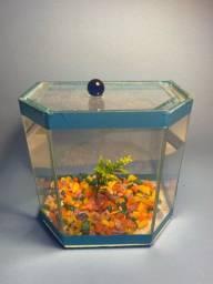 Título do anúncio: Vendo aquários