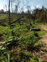 Vende-se area de fazenda 981 hectares