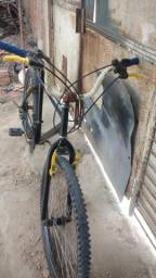 Vendo bicicleta de macha