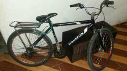 Bike // Bicicleta quadro Houston original