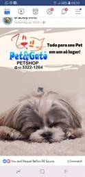 Banho e Tosa PetShop Tudo em um só Lugar