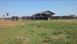 Fazenda para produção agrícola