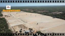 Loteamento Mirante do Iguape... Ligue e invista ...