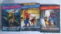 Livros os mistérios de um cão e uma garota