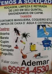 Serviço de detetizaçao de pulgas e carrapatos no seu animal de estimação e quintal