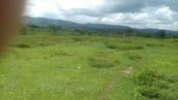 500 Hectares, pecuária, região do Manso-Chapada dos Guimarães-MT