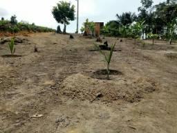 Vendo terreno no rio preto medindo 10x50