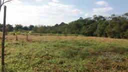Terreno à venda, 3200 m² por R$ 65.000,00 - Ponte Alta - Morretes/PR