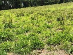 AM Adquira um Terrenão em Atibaia! são 500 m² Parcelados