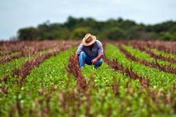 Crédito Rural ! Compre sua fazenda ou propriedade ! Entrada + parcelas anual