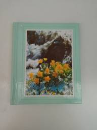 Álbum de fotos cartona