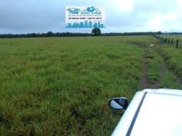 Excelente Fazenda ha 33 km de Cuiabá com 635 Hectares