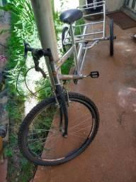 Bicicleta Longa Carga 3 Rodas.