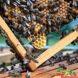 Vendo mel, envio pelos correios