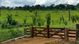 Fazenda em Machadinho do Oeste Rondônia