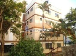 Apartamento à venda com 2 dormitórios em Santa amélia, Belo horizonte cod:45067