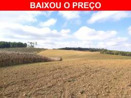 Bela Área de Soja - 7,55 alqueires - Rio Negrinho - SC
