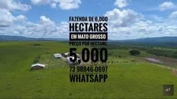 Fazenda de 6,000 hectares de pecuária no Mato Grosso