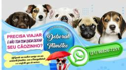 Título do anúncio: Cuidadora de cães