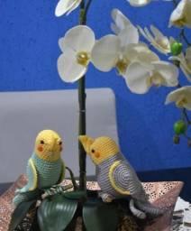 Amigurumi calopsitas e periquitos | Aves de crochê, Artesanato de ... | 256x212