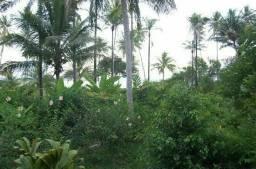(eddy)Terrenos de 1000m2 e 3000m2 em Igaratá ,viver em paz