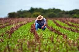 Crédito rural compre sua propriedade e pague anualmente