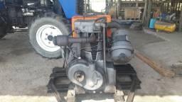 Motor agralho 9