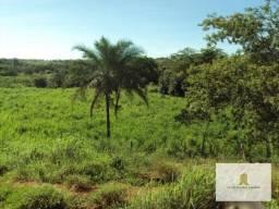 Fazenda riquíssima em água ? Correntina / BA
