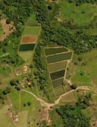 Vendo uma fazenda na região de Rondonópolis com 104 alqueires (249.6 Hectares)