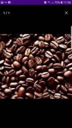 Café Puro ( Orgânico) Barato, estudo proposta!