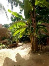 Terreno em Olinda