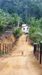 Vendo fazenda em jitauna com 19 hectares