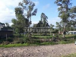 Terreno à venda em Cerrito, Santa maria cod:10766