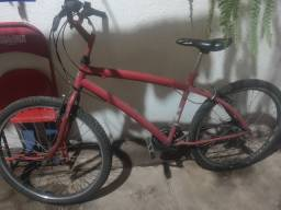 bike Vicini, 21V
