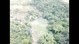 Vendo Propriedade Area de 22 hectares em Tamandare Investimento Certo