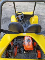 Mini buggy fapinha xingu
