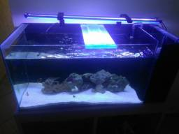 Aquario 200L para agua salgada