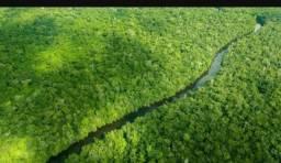 Áreas de Terras no Amazonas com ICMBIOS